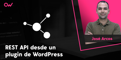 Llamando a la REST API desde un plugin de WordPress