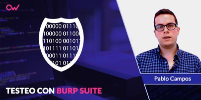 Hacer testeo con Burp Suite