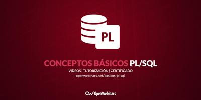 Conceptos básicos de PL/SQL
