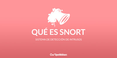 Qué es Snort