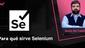 Para qué sirve Selenium