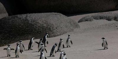 Curso para Aprender Linux desde Cero