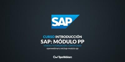 Curso SAP: Introducción al módulo PP