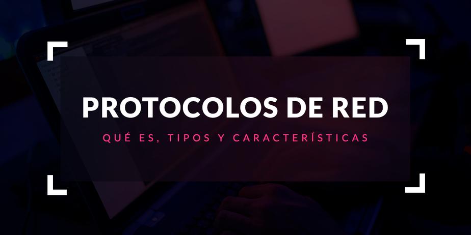 Protocolo de red: Qué es, tipos y características