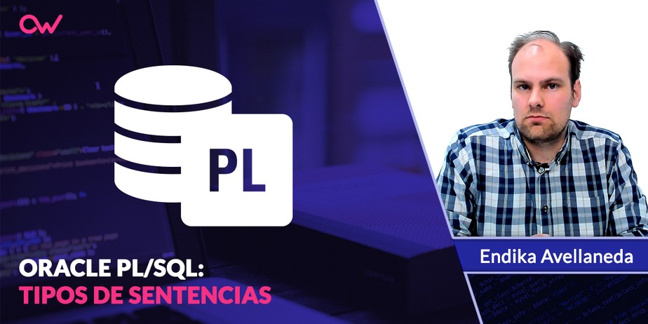 Oracle PL/SQL: Tipos de sentencias