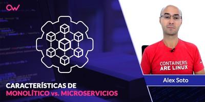 Las 7 características de estructuras monolíticas y los microservicios