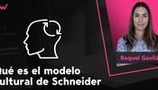 Qué es el modelo cultural de Schneider