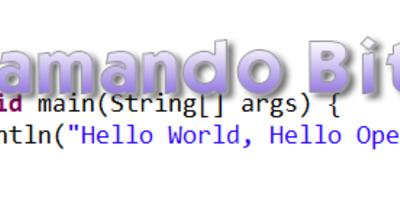 Programación bit a bit: Introducción