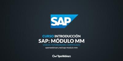 Curso SAP: Introducción al módulo MM