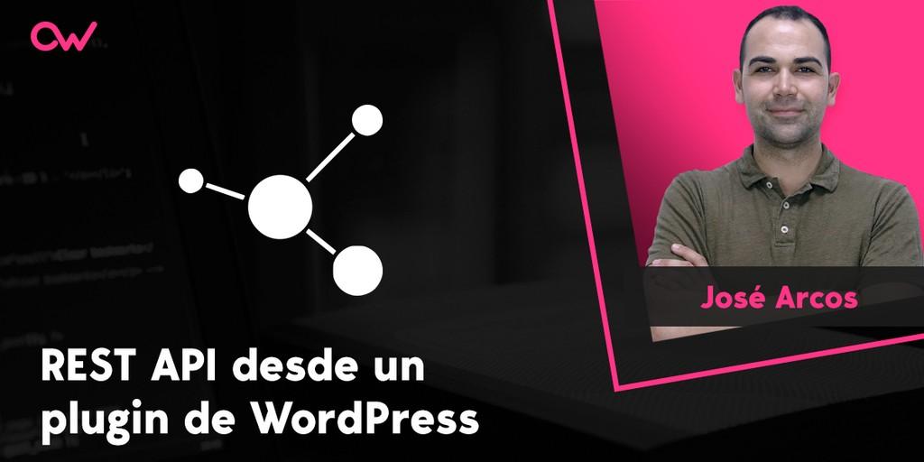Llamando a la REST API desde un plugin de WordPress