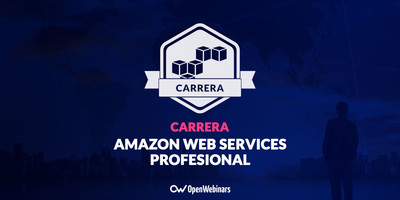 Amazon Web Services Profesional