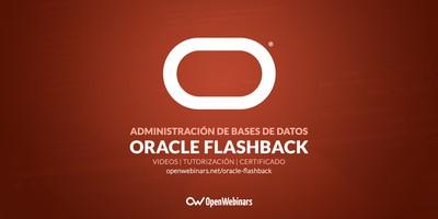 Administración de bases de datos con Oracle Flashback
