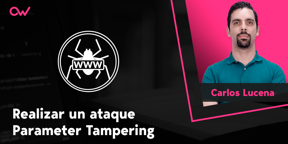 Realizar un ataque Parameter Tampering