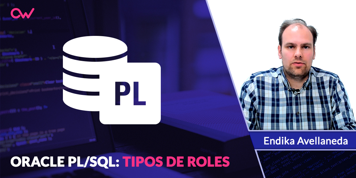 Oracle PL/SQL: Tipos de ROLES